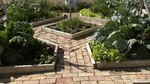 Resolution Gardens Fall Vegetables Video Thumbnail