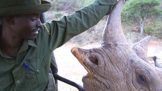 Turning Poachers into Preservationists in Africa