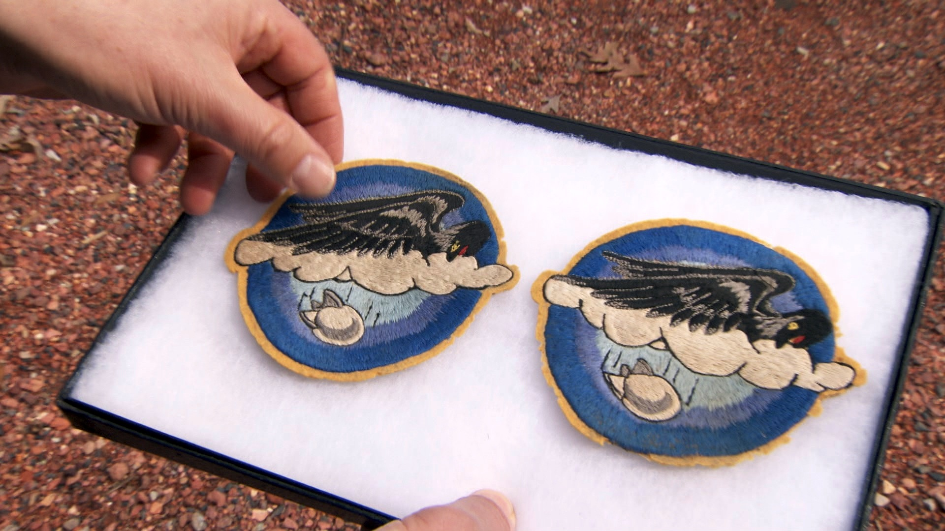 History Detectives | World War II Patch: Bird of War | PBS