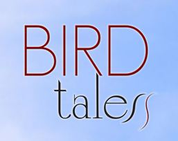 More Bird Tales Video