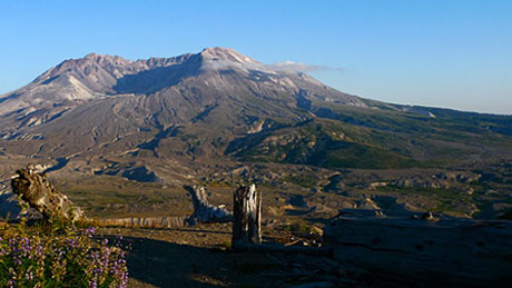 Mt St Helens: Back From the Dead